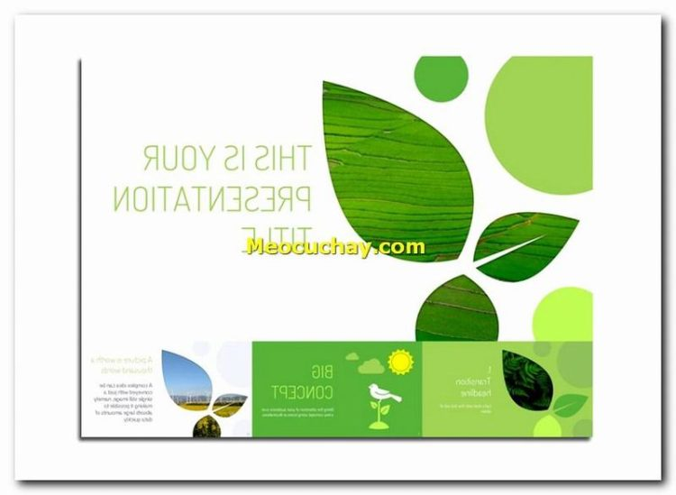 Download-mien-phi-slide-3